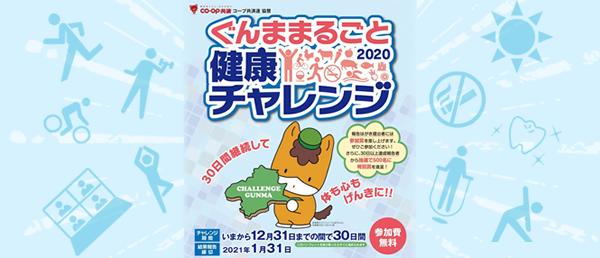 ぐんままるごと健康チャレンジ2020 パンフレットイメージ
