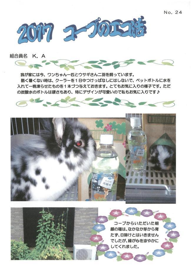 2017_eko_NO24.jpg